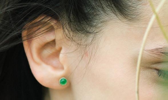 orejas de soplillo